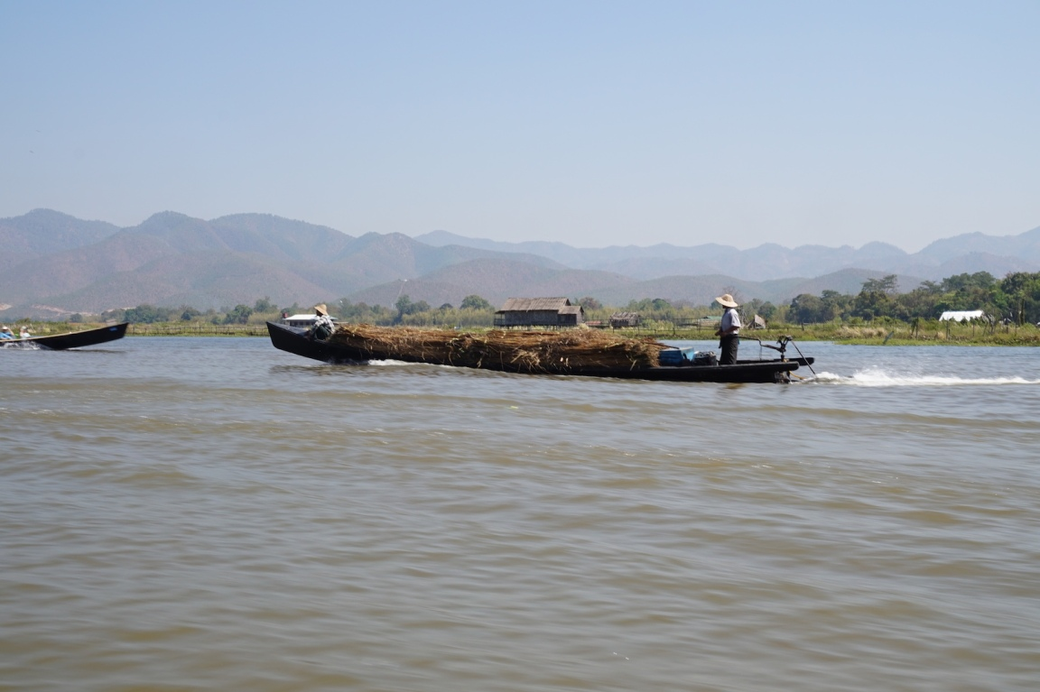 inle91