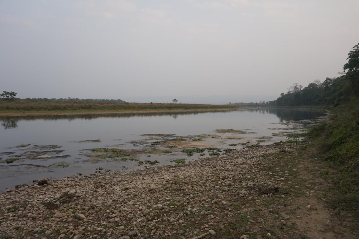 Chitwan29