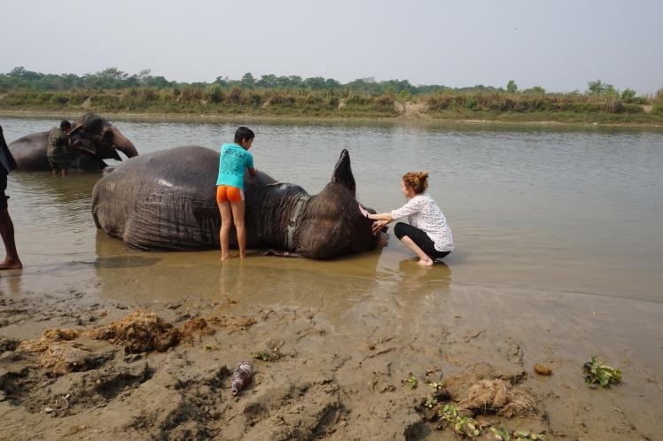 Chitwan57