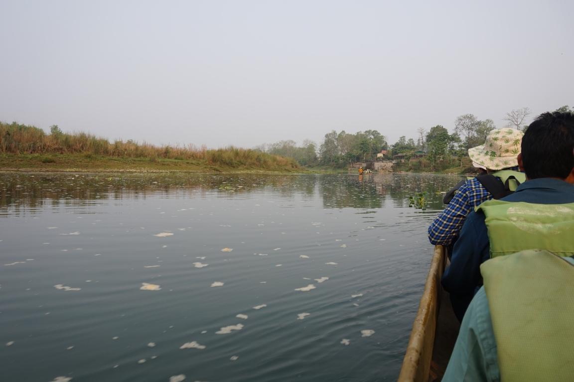 Chitwan6