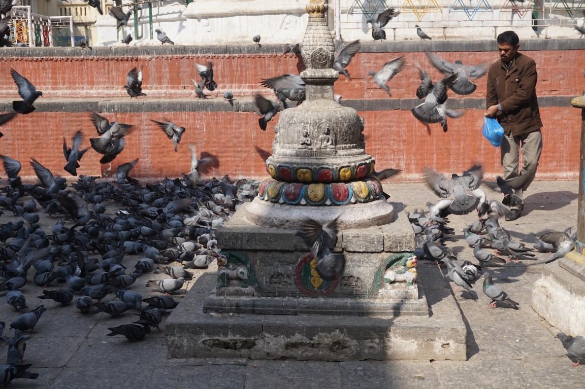 Kathmandou44