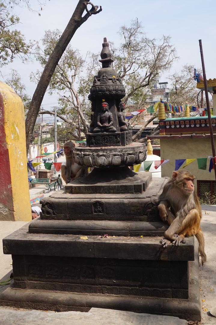 Katmandou0244