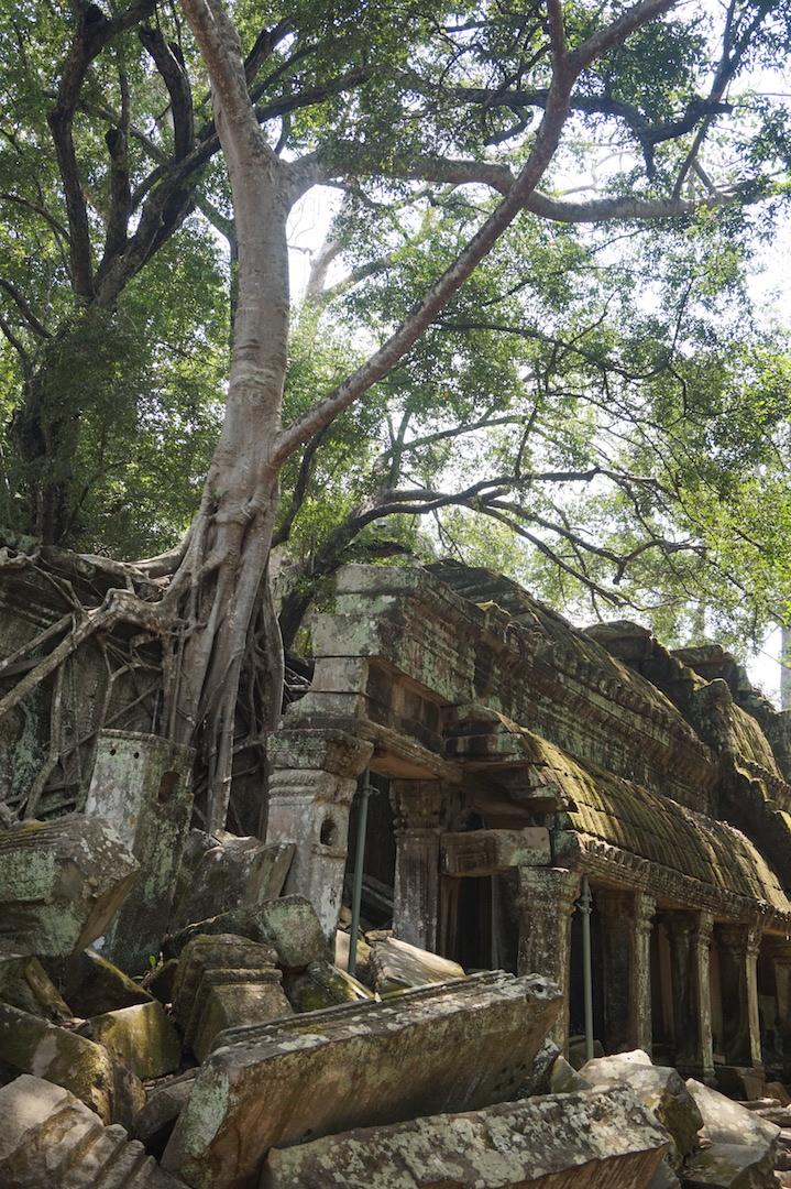 SiemReap-Angkor9