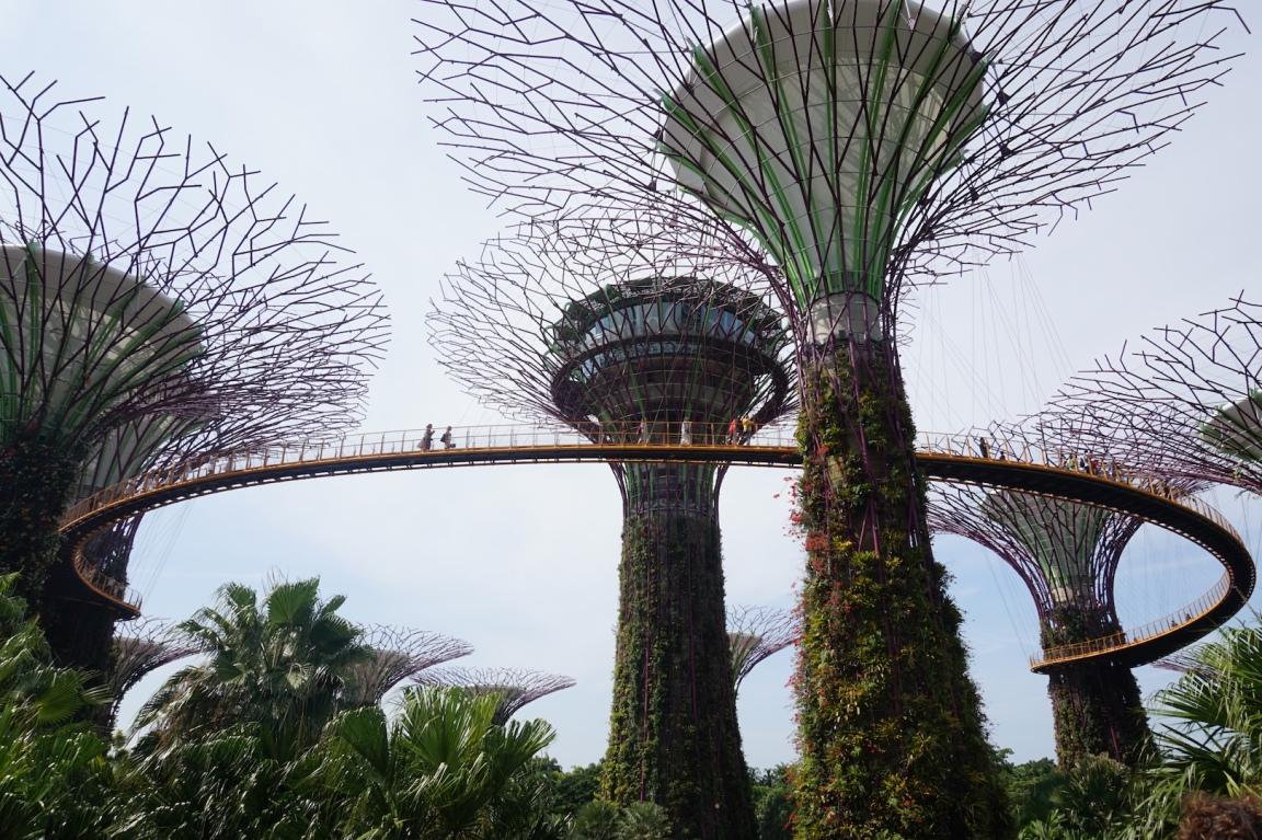Singapour8