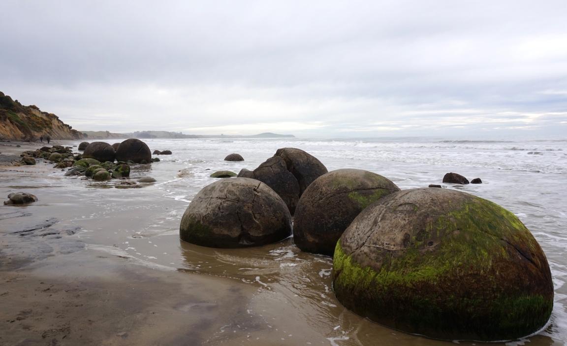 Dunedin et Otago39