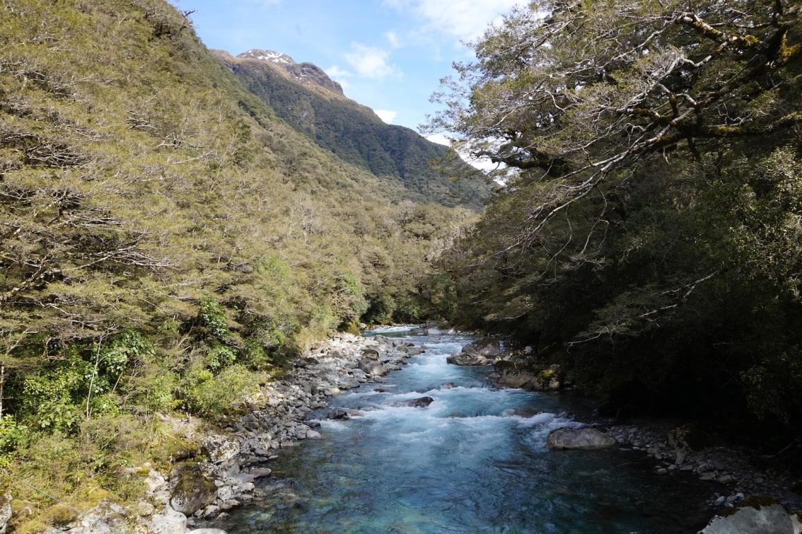 Milford Sound14