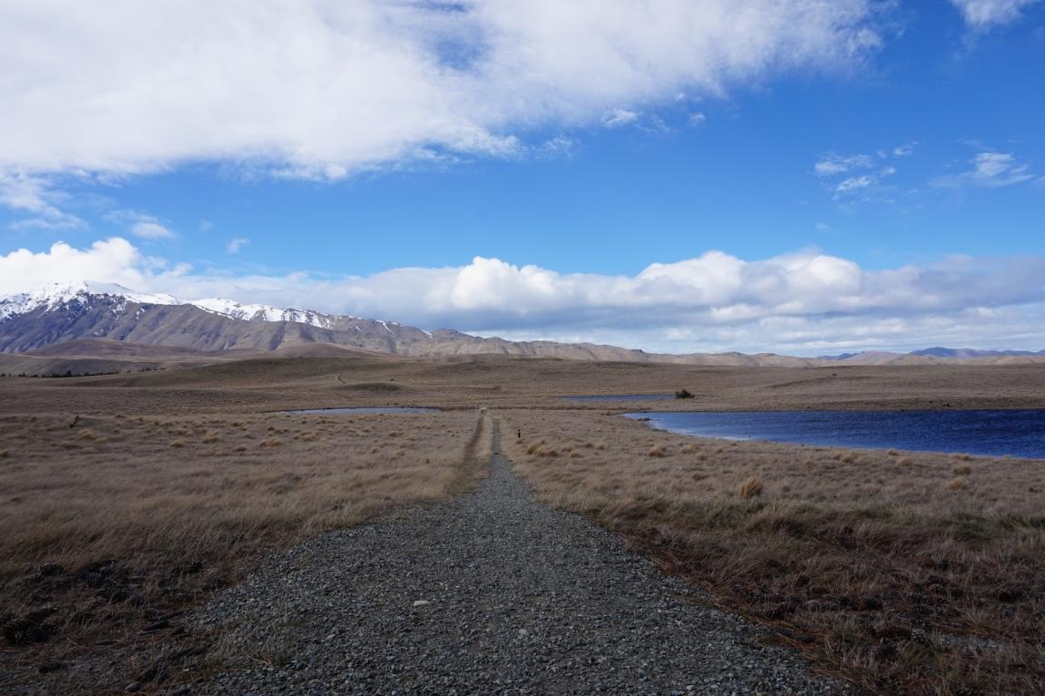 Région Mont Cook48