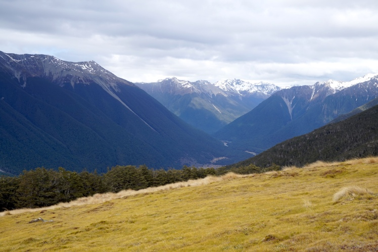 Nelson Lakes5