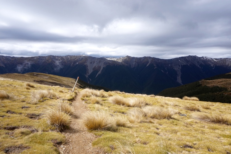 Nelson Lakes8
