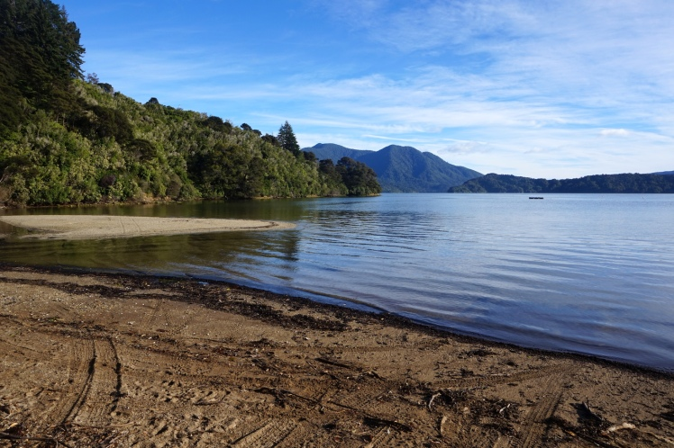 Quennes Charlotte Track8