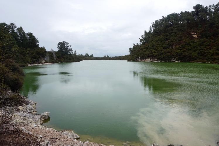 Rotorua13