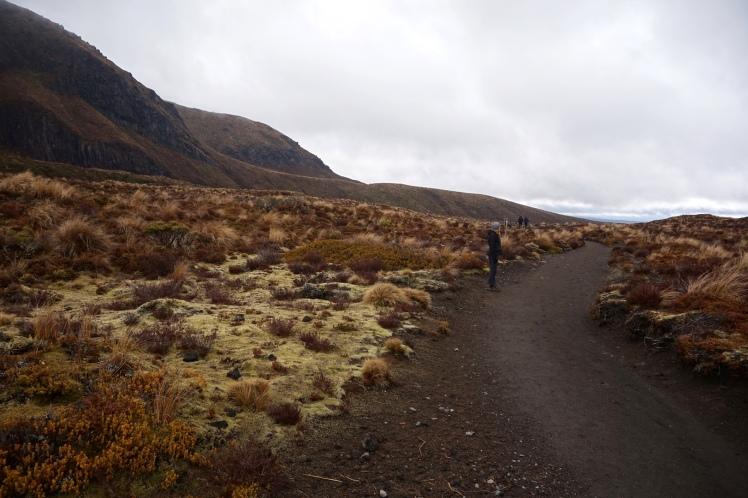 Tongariro4