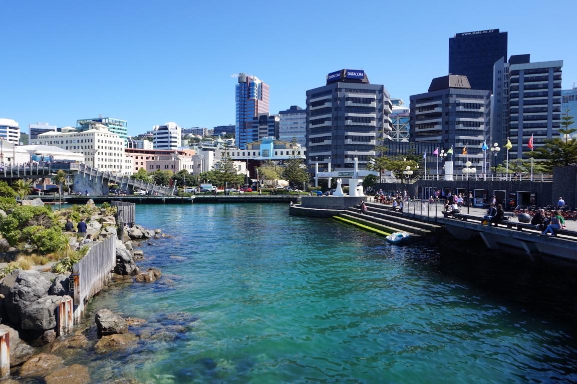 Wellington8