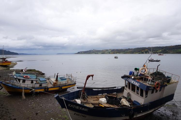 Chiloé31