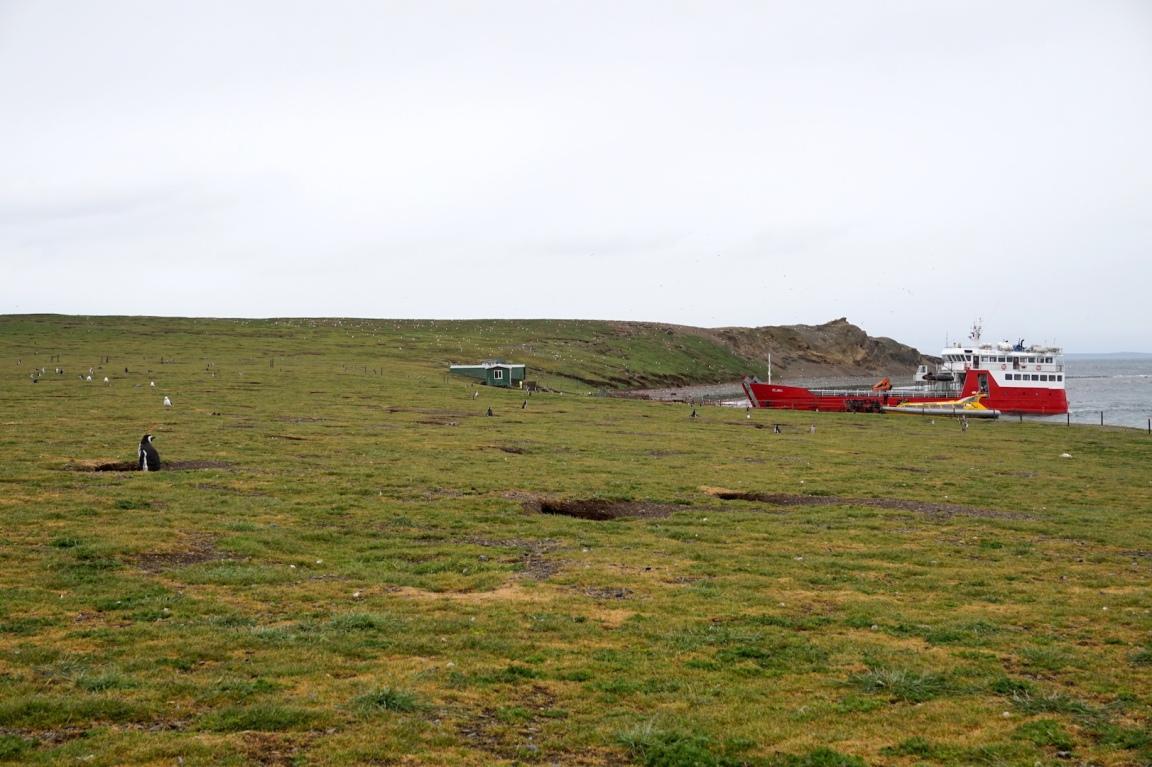 Punta Arenas23