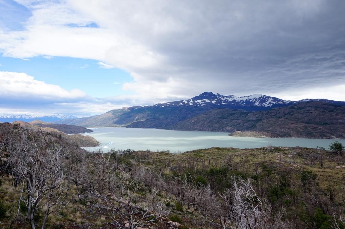 Torres del Paine107