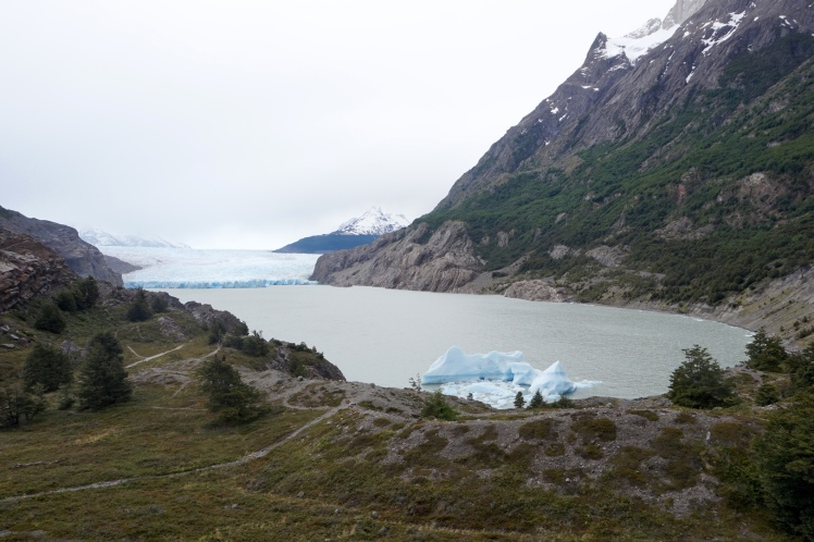 Torres del Paine98