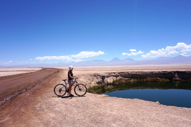 San Pedro de Atacama46