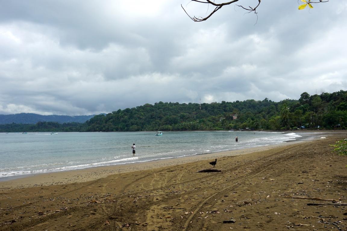 Bahia Drake6