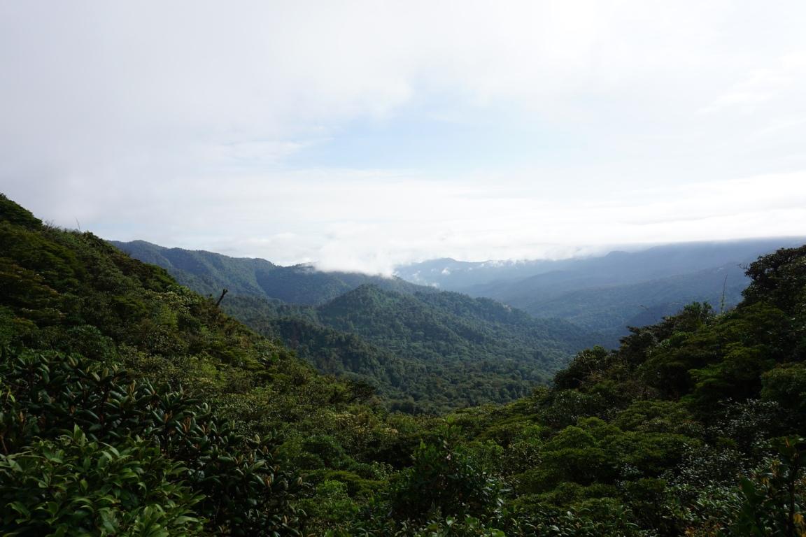 Monteverde3
