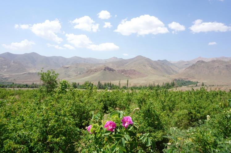 Kashan à Isfahan9