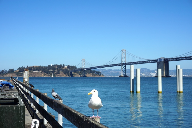 Oakland3
